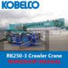 Kobelco RK250 3