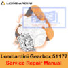 Lombardini Gearbox
